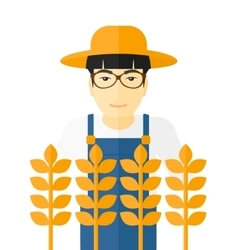 Man in wheat field vector image