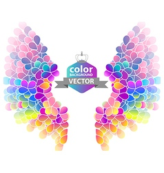 Bright color floral background with wings vector image