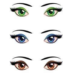 Cartoon female eyes vector image