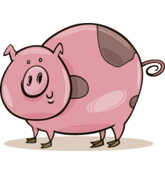 cartoon spotted pig vector image