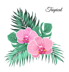 Exotic tropical bouquet orchid leaves vector