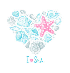 heart seashells love vector image