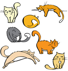 Several Cats vector image