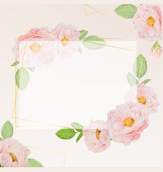 watercolor pink roses with golden frame square vector image