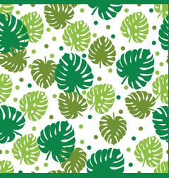 tropical leaves palm and monstera seamless vector image