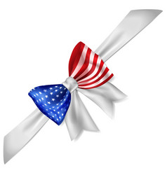 big bow in us flag colors vector image
