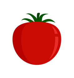 tomato food icon flat isolated vector image