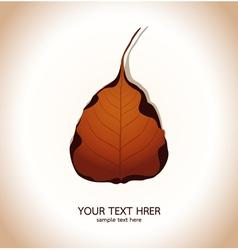 Bodhi leaf natural vector