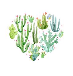 watercolor cactus heart composition vector image vector image