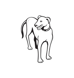 Dog Standing Front Cartoon vector image