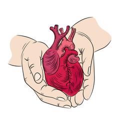 Heart and hands health symbol medicine human hand vector