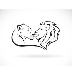 Male lion and female lion design on white vector