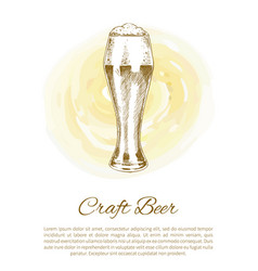 Pilsner craft beer glass on color plash poster vector