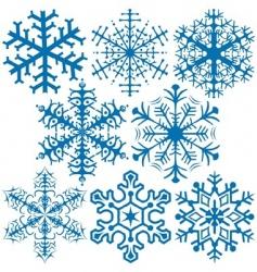 snowflakes a vector image vector image