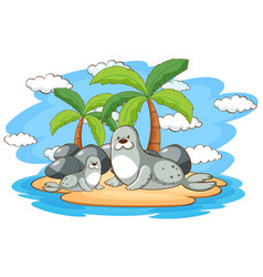 Two seals on island vector