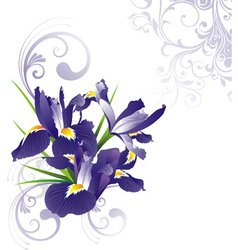 romantic floral illustration v vector image vector image