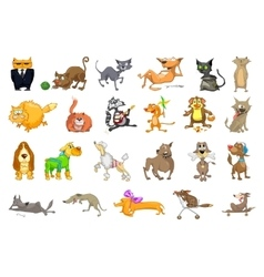 set of cats and dogs vector image