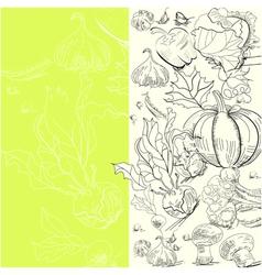 vegetables sketch vector image