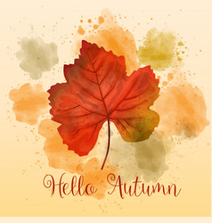 autumn watercolor background with beautiful leaf vector image