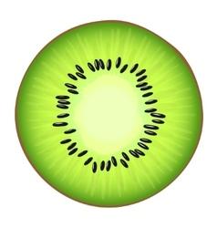 Juicy half kiwi vector