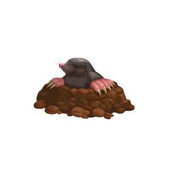 Mole icon rodent animal pest control extermination vector