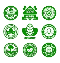 Organic Food Green Labels Set vector image