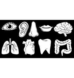 Different organs vector