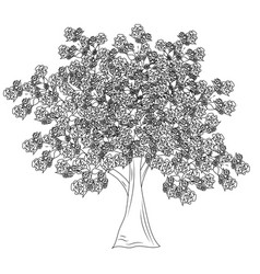 large leafy flowering tree in format vector image