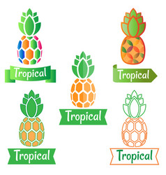 Tropical logo symbol pineapple vector
