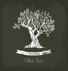 natural oil tree logo for olive grove vector image vector image