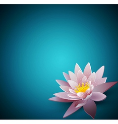 background with a water lily vector image