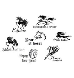 Black stallions and mustangs vector image