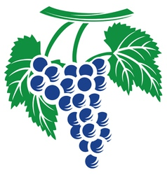 grapes symbol vector image