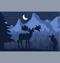 photographer photographs deer in nature vector image
