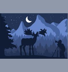 Photographer photographs deer in nature vector