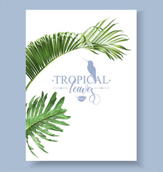Tropic leaves banner vector