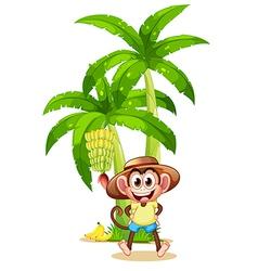 A very happy monkey near the banana plant vector image vector image