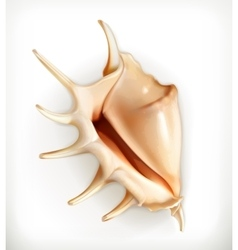 Seashell icon vector image vector image