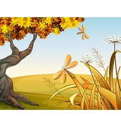 Dragon flies in the autumn hill vector image vector image