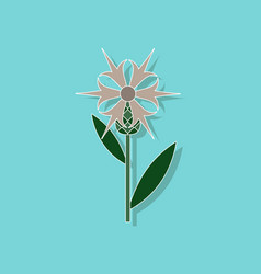 paper sticker on stylish background flower vector image