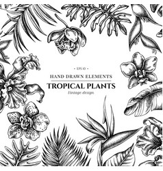 Floral design with black and white monstera vector