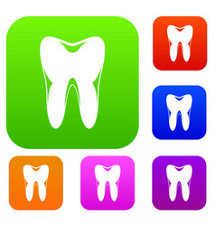 human tooth set collection vector image