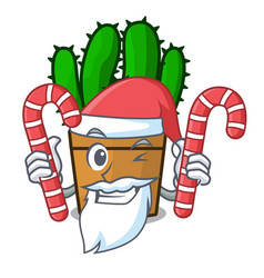Santa with candy the beautiful spurge cactus plant vector