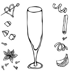 champagne flute coctail glass hand drawn vector image