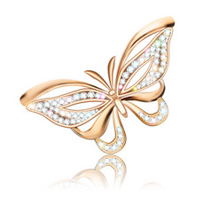 a jewelry brooch shiny golden butterfly with vector image