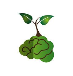 brain human with tree creative icon vector image