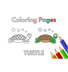 Cartoon turtle coloring book vector