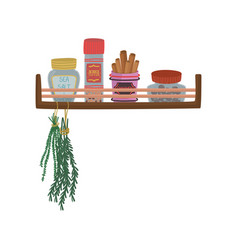 Different jars with herbs and spices bunch of vector