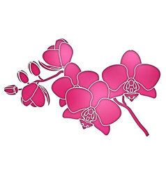 Paper cut purple silhouette orchids branch vector