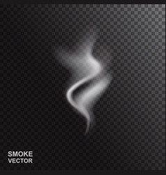Realistic smoke or steam vector